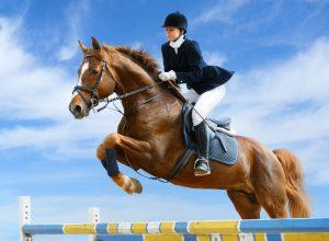 Hevonen hyppää